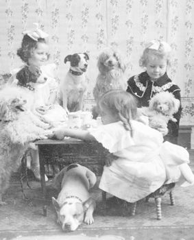 Digital Black and White Photo of Girls Playing with Dogs #TqFNj1vDL54