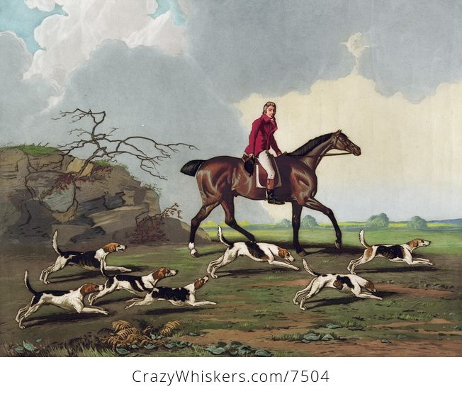 Digital Illustration of a Man Captain Ricketts on Horseback Fox Hunting with Dogs - #9JWFjX0EnbA-1