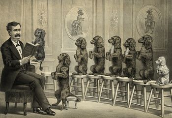 Digital Illustration of a Man Surrounded by Dogs Sitting up and Begging on Stools One Dog in His Hand As He Reads Them a Book #9c6Q9c5wObk