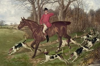 Digital Image of a Man Fox Hunting on Horseback Surrounded by Dogs #62kHJNy5KpM
