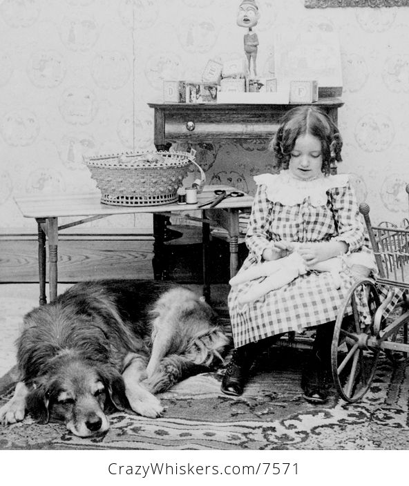 Digital Photo of a Dog Resting by Girl Sewing a Doll - #5rcx6fokhfg-1