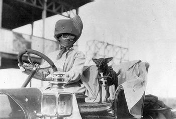 Digital Photo of a Woman Driving a Car with Her Dog #GWlP1LELYcc