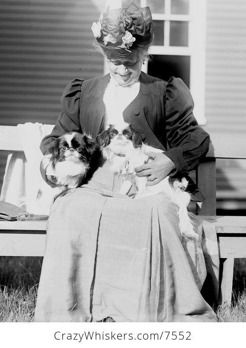 Digital Photo of a Woman with Japanese Spaniels - #dtYFWQFG5zA-1