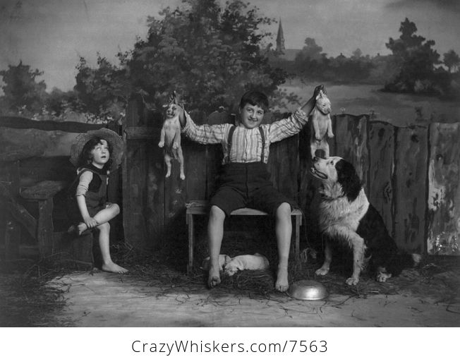 Digital Photo of Children with a Dog and Puppies - #GiJaZk9eCR8-1