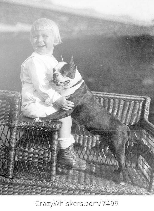 Digital Photo of Gerald Ford with His Boston Terrier - #r1dhgp3bPdU-1