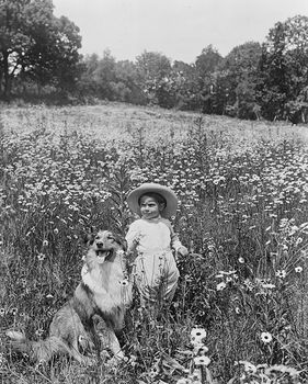 Historic Digital Photo of a Child and a Collie Dog in a Field #1VFTGdiJL18