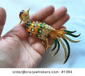 Huge Colorful Bird Brooch Pin #cKrFgIaOglQ