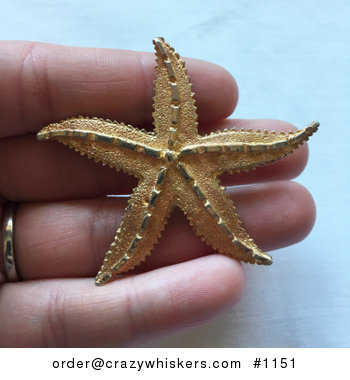 Large Vintage Textured Gold Toned Starfish Brooch Pin #85AB2keMOm8