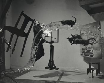 Salvador Dali with Flying Cats #ir5SRDpOaFI