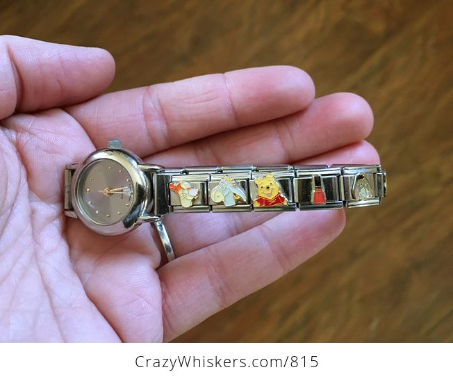 Stainless Steel Link Bracelet Watch with Disney Characters and Other Charms - #Wp9BfPQdKJU-1
