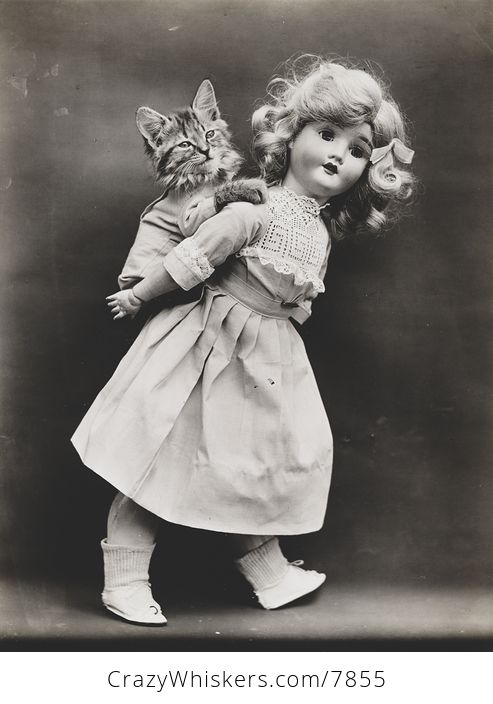 Vintage Digital Image of a Kitten Getting a Piggyback Ride from a Doll - #PBYx91p0K2Y-1