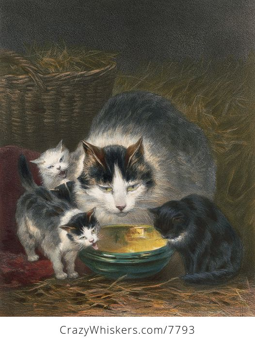 Vintage Digital Image of a Mother Cat and Kittens - #U4bSCoSH4fc-1
