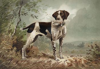 Vintage Digital Image of a Pointer Dog with Fowl C1879 #ugvkAhqv0r8