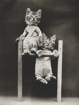 Vintage Digital Image of Kittens Playing on a Bar #kXrTQKbiWp4