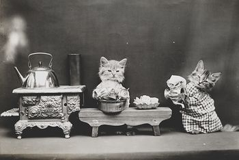 Vintage Digital Image of Kittens Washing Dishes #ToSEG6oixPE